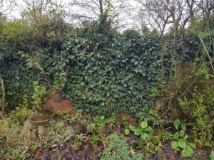 pre removal of garden waste