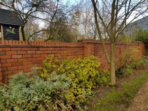 garden wall clean