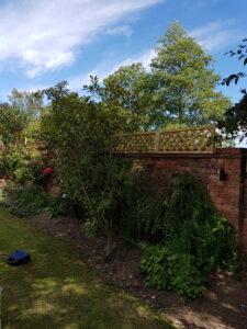Garden work
